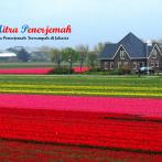 Jasa Penerjemah Bahasa Belanda
